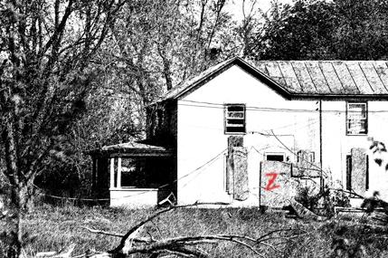 Zed House